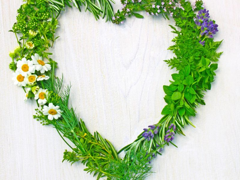 Heart Shaped From Fresh Herbs
