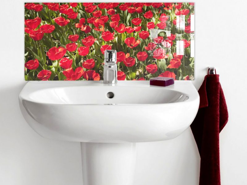 Red Tulips Field Basin Splashback